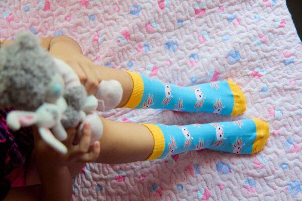 calcetines de axolotes